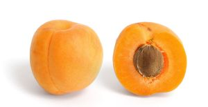 Apricot_and_cross_section
