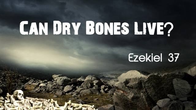 dry-bones-title